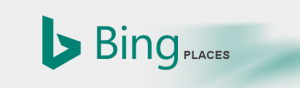 Write a Bing Places Review